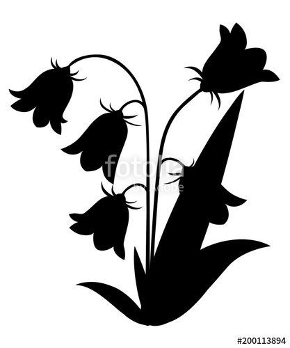 417x500 Black Silhouette. Bluebell Flower With Leaves. Floral Icon. Vector
