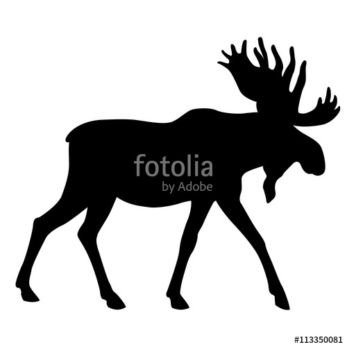 500x500 Adult Moose Go Black Silhouette Stock Image And Royalty Free