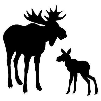 400x400 Collection Par Laplacelau Moose Collection