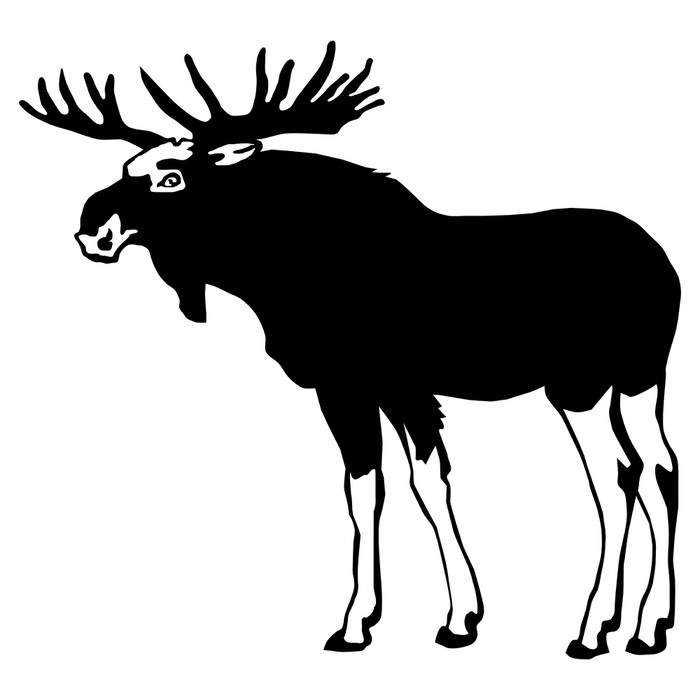 700x700 Moose Silhouette Sticker We Live To Change
