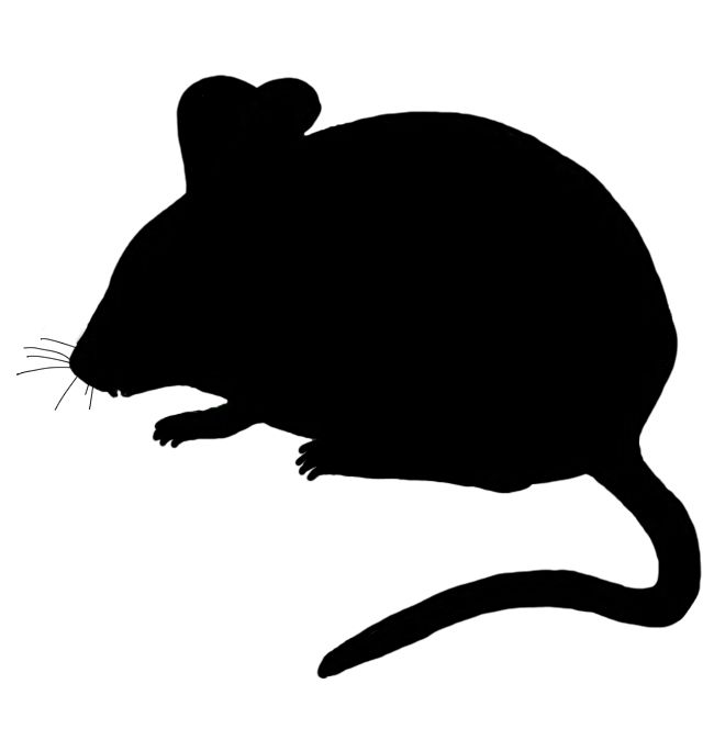 Silhouette Mouse