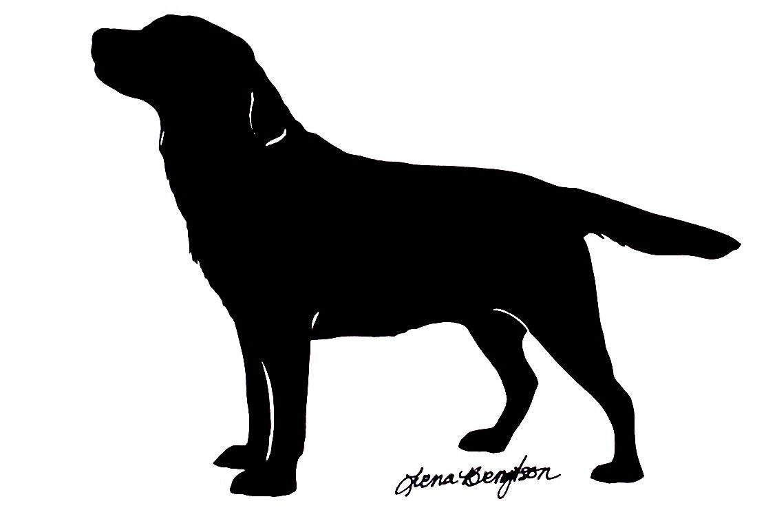 1113x741 Labrador Silhouettes Pictures 20 00 My Pet Silhouette Find Your