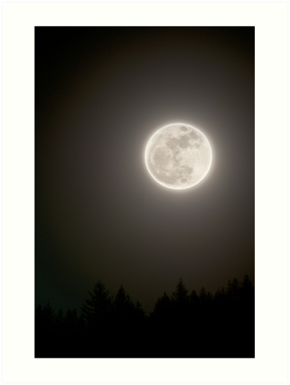 413x549 Full Moon In The Night Sky With Silhouette Of Trees Night