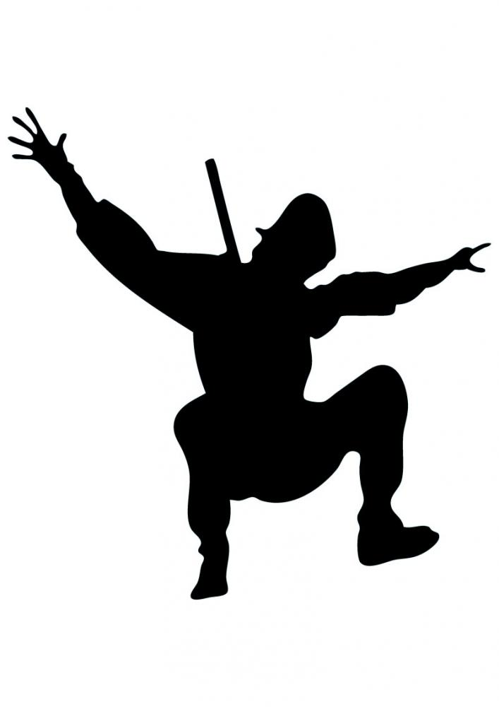 Silhouette Ninja
