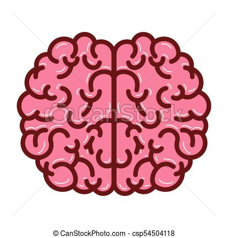 450x470 Brain Top View In Colorful Silhouette With Thick Brown Vector