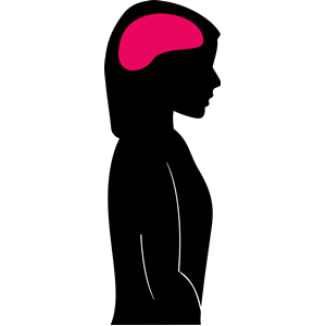 300x300 Female Silhouette With Brain Clipart, Cliparts Of Female