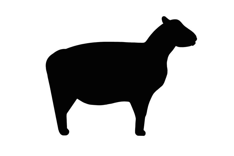 800x534 Lamb Clipart Silhouette