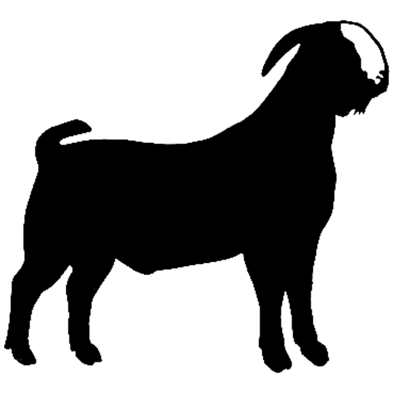 800x800 Buy Goat Sticker And Get Free Shipping