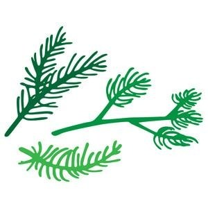 300x300 Pine Tree Branch Silhouette Simple Living Tree In The World Places