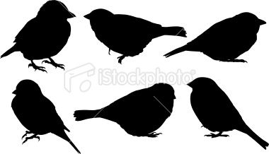 380x218 Sparrow Silhouettes. Traced From Photos That I Took. 300dpi Jpg