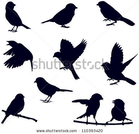 450x434 Vector Silhouettes Of Birds, Sparrows In Different Poses Bird