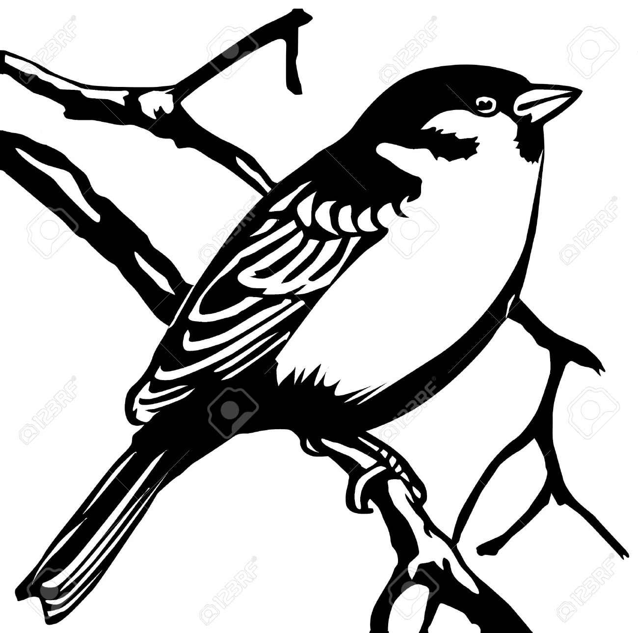 1300x1289 6657995 Silhouette Sparrow On White Background Stock Vector
