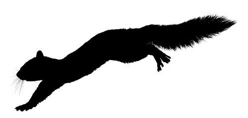 500x238 Running Squirrel Silhouette Clipart Panda