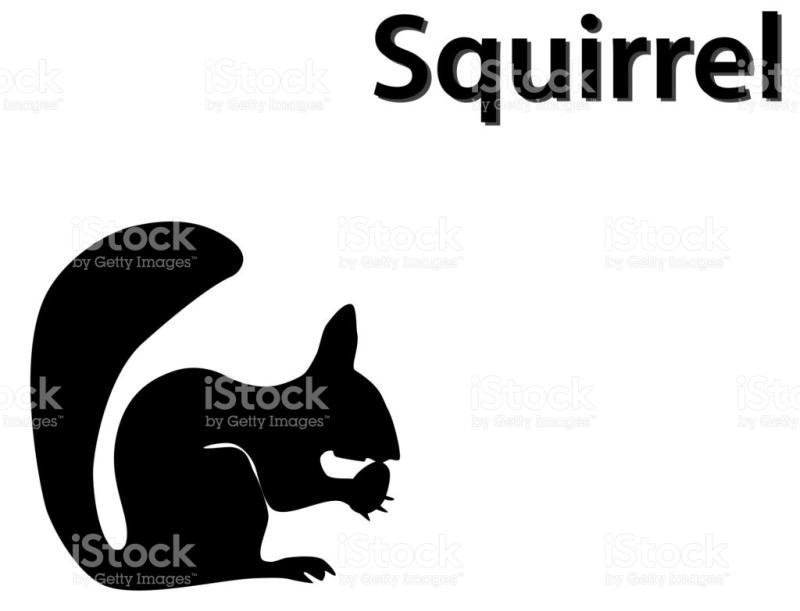 800x611 Squirrel Silhouette Clip Art