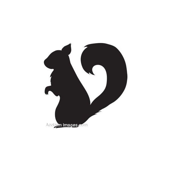 600x600 Clip Art Of A Squirrel Silhouette Found On Polyvore