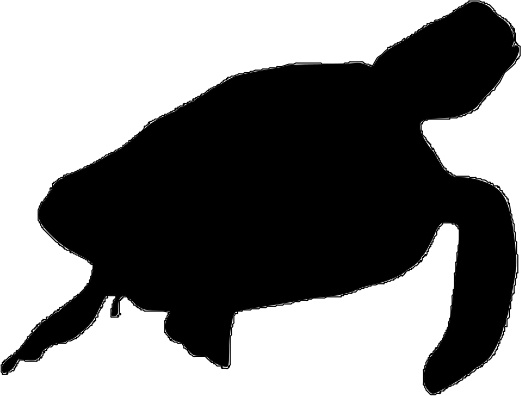 521x396 Sea Turttle Silhouette Free Vector In Open Office Drawing Svg
