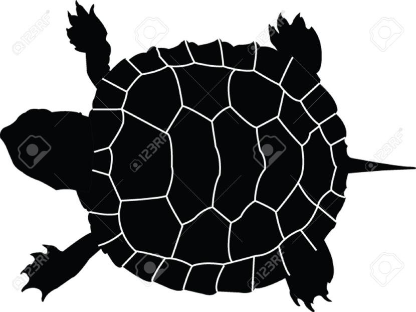 830x622 Best Turtle Silhouette