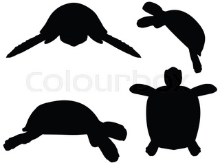 320x237 Turtle Silhouette On White Background Stock Vector Colourbox