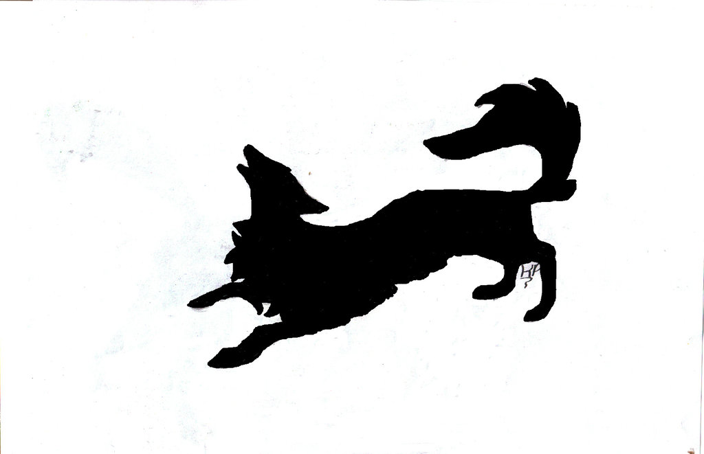 1024x661 Wolf Head Silhouette By Paperlightbox