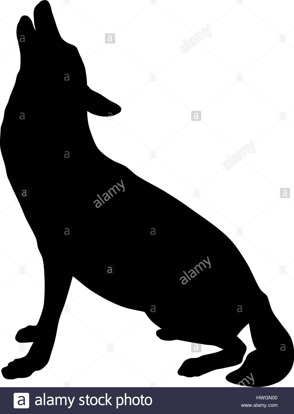 989x1390 Group Of Wolf Silhouette Stock Photos