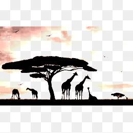 260x261 African Grasslands, Monochrome, Africa, Prairie Png Image