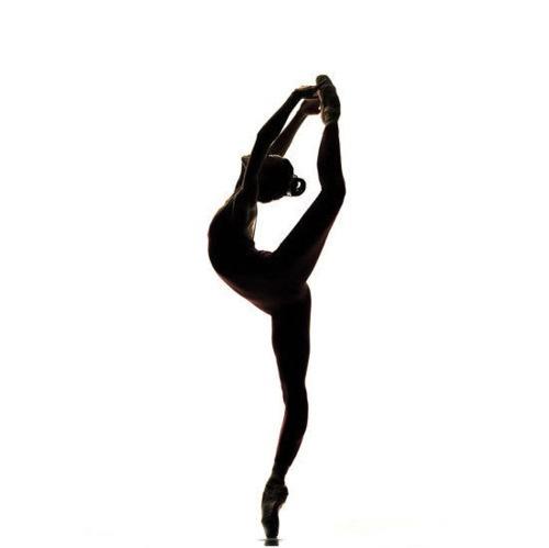 Silhouette Of Ballet Dancer