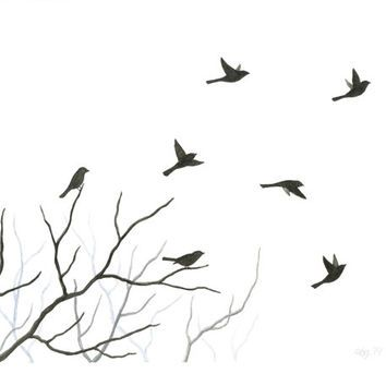 Silhouette Of Birds In Flight