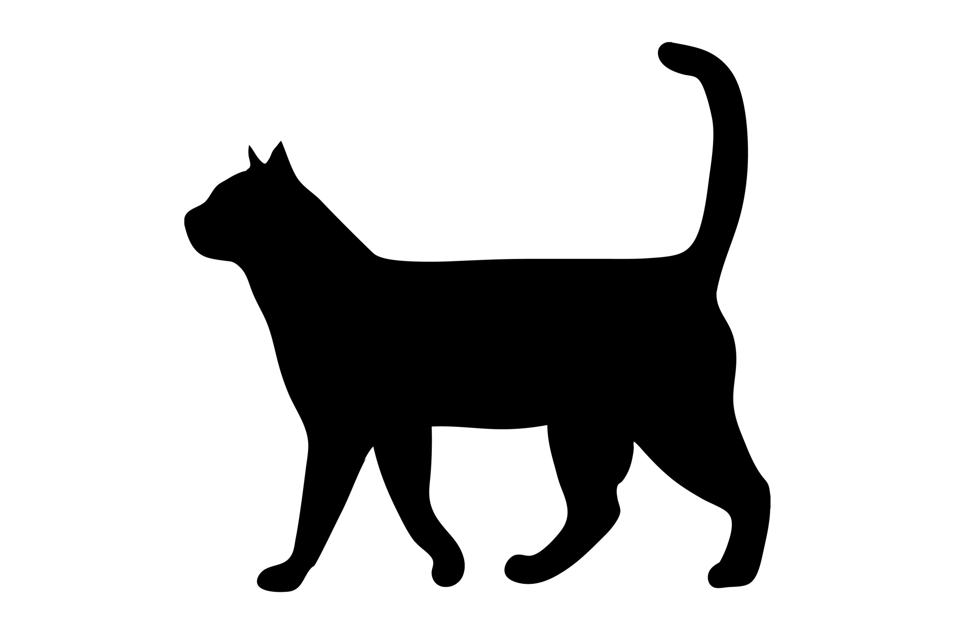 1920x1280 Walking Cat Clipart Amp Walking Cat Clip Art Images