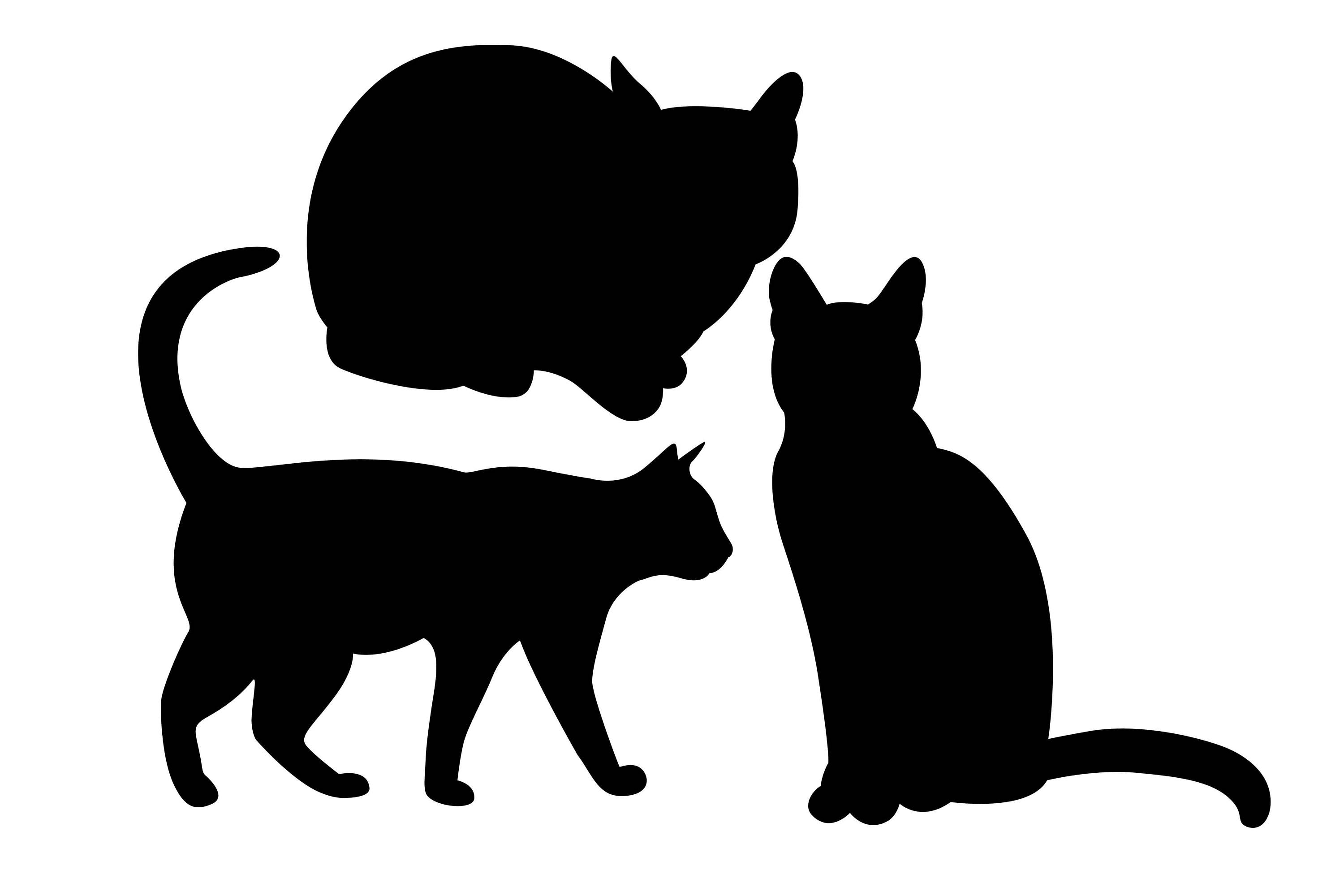3000x2000 Cat Silhouette, Cat Clipart, Kitty Silhouette, Domestic Animal