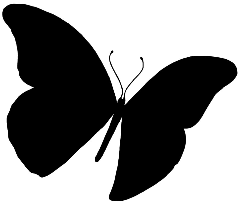 973x822 Butterfly Silhouette By Zucco1