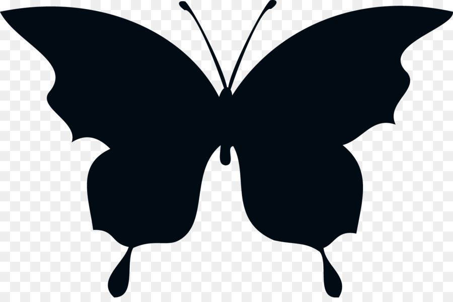 900x600 Butterfly Silhouette Drawing Clip Art