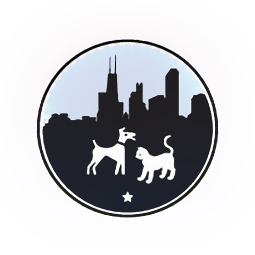 Silhouette Of Chicago Skyline