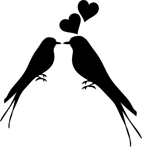 576x595 Bird Couple Drawing