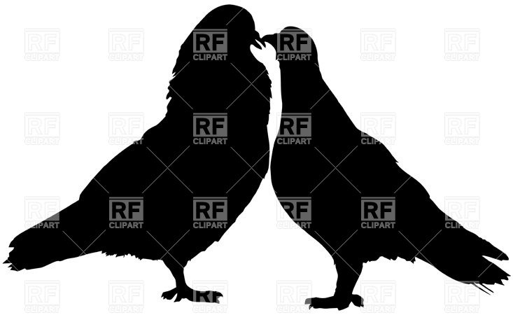 733x450 Couple Of Kissing Doves Royalty Free Vector Clip Art Image