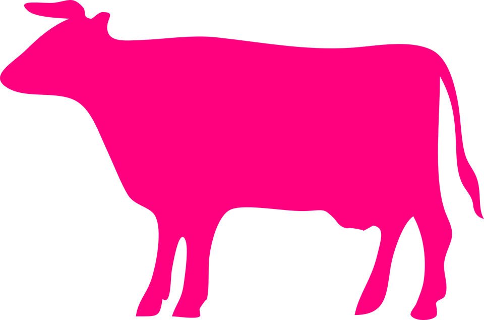 960x634 Pink Cow Clipart Collection
