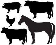 189x154 Silhouette Of Pigs Premium Clipart