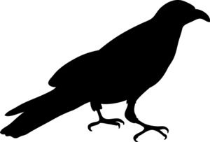 300x203 Crow Clipart Image Silhouette Of A Crow Or Raven In Black