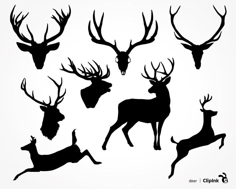 800x640 Deer Svg, Deer Head, Scull And Antlers Svg, Png, Eps, Dxf, Pdf
