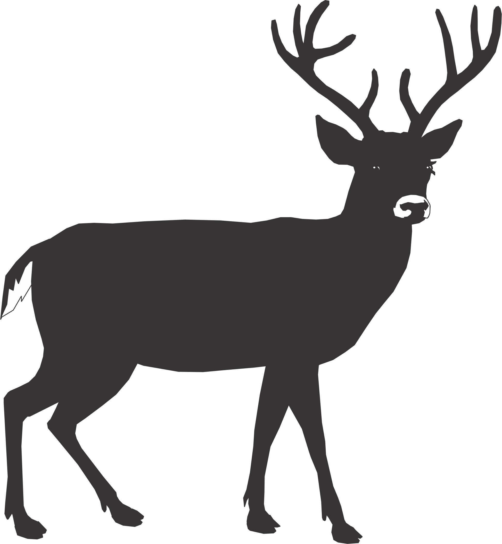 1947x2112 Silhouette Of Deer Head
