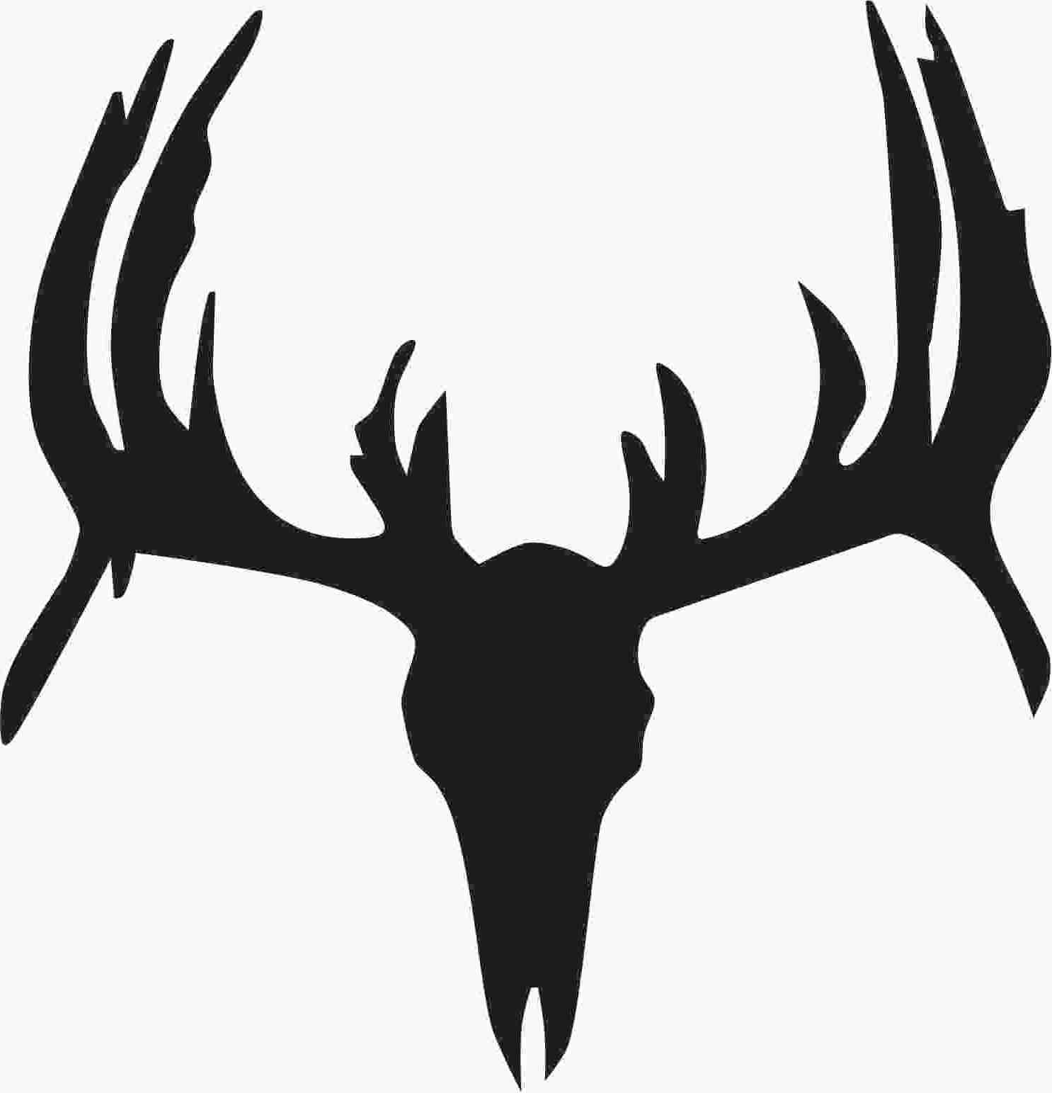 1486x1543 Deer Head Black And White Free Download Best Striking Antlers
