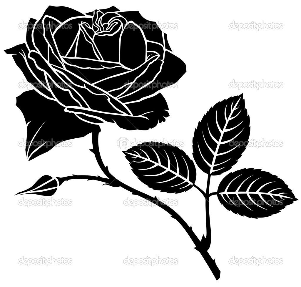 1024x975 Rose Flower Silhouette Stock Vector Agrino