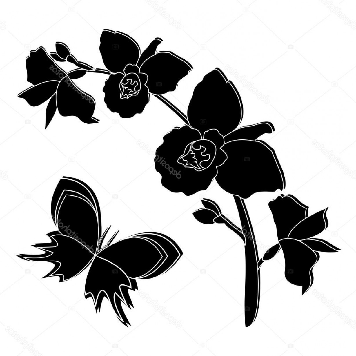 1228x1228 Stock Illustration Black Silhouette Of Orchid Flowers Createmepink