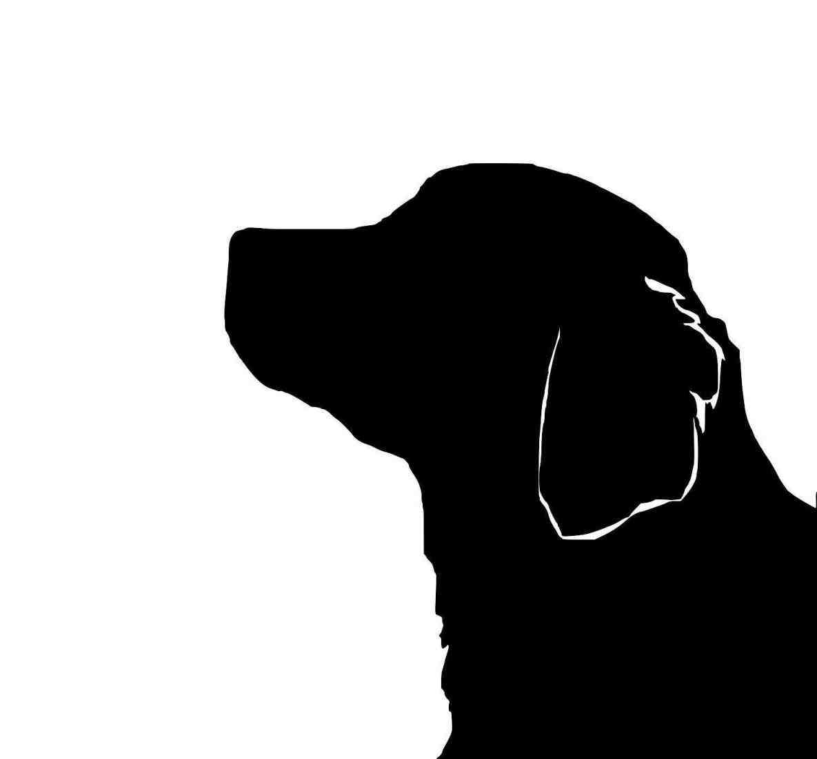 1185x1102 Clipart Black And White Pencil In Color Golden Golden Retriever