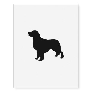 307x307 Golden Retriever Temporary Tattoos Zazzle