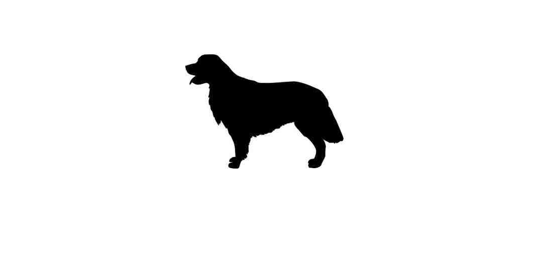 1063x512 Retriever Dog Svg Silhouette With Name Golden Golden Retriever