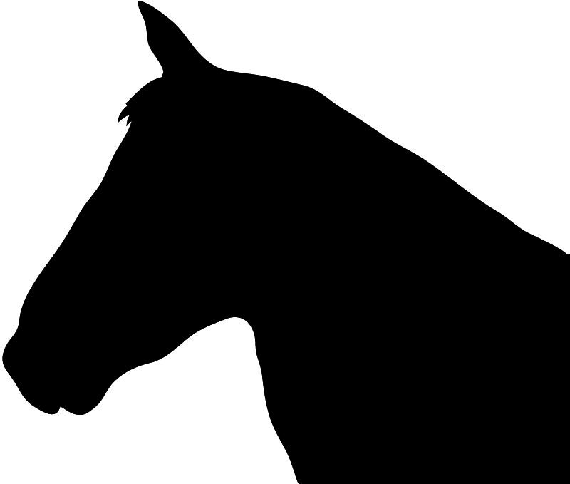800x679 Horse Silhouette