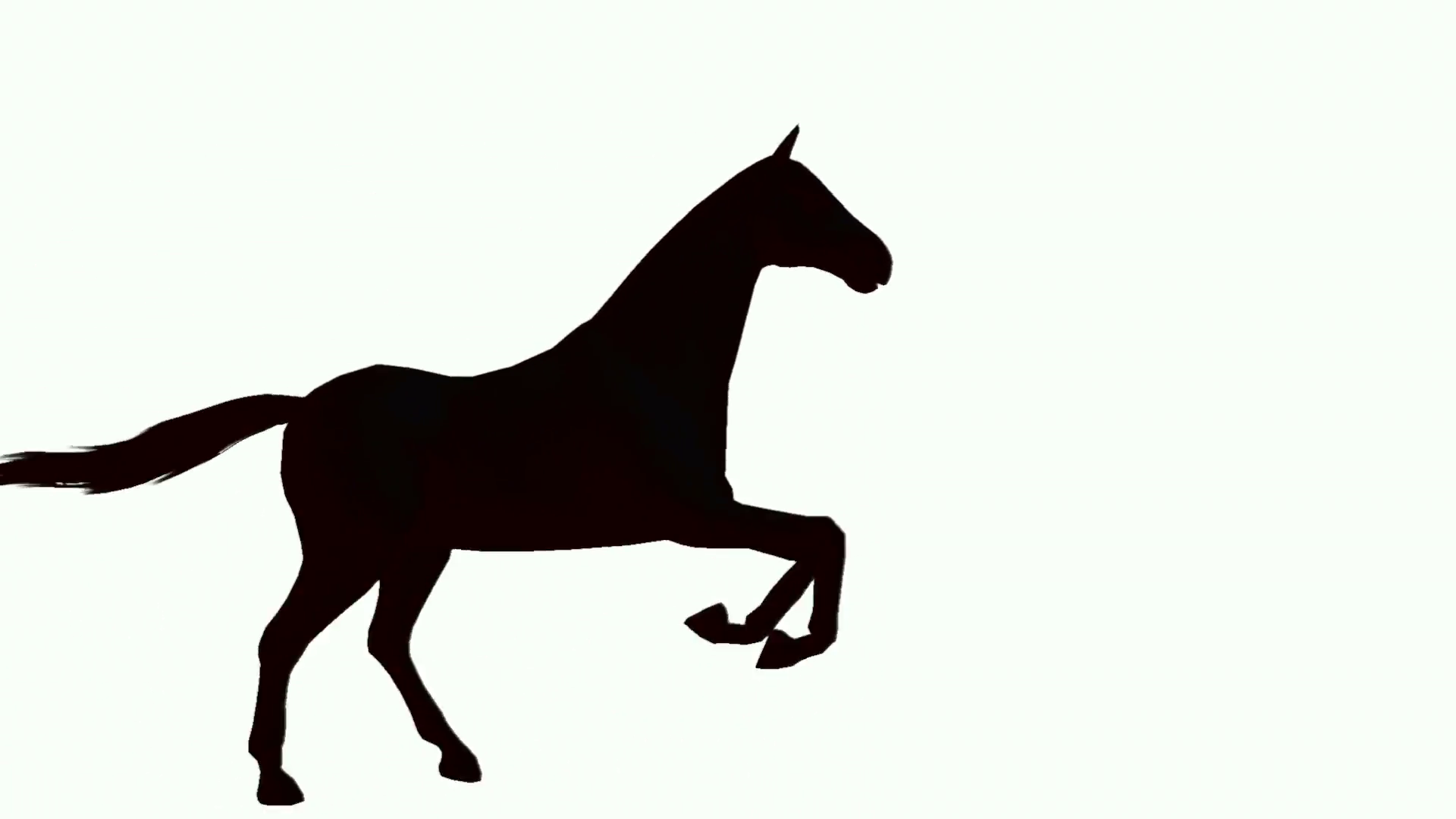 1920x1080 Silhouette Of Horse Galloping Across The Screen Motion Background