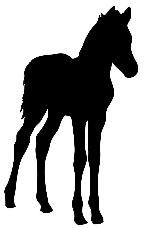 567x886 Horse Silhouette Animal Silhouettes, Vectors, Clipart, Svg