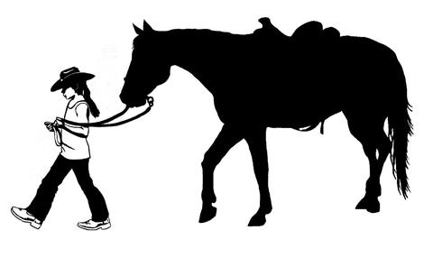 480x286 Horse Silhouette Tagged Western Rider Artistry Of The Horse