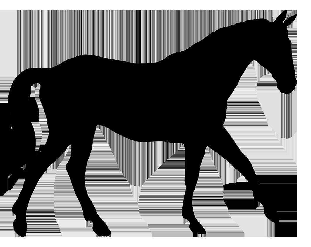1063x844 Horse Silhouette Clipart